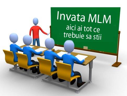 despre afaceri mlm
